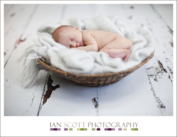 newborn photography Hertfordshire 6