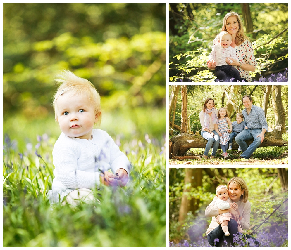 family photos in bluebell wood Harpenden